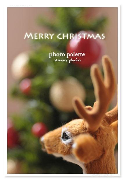 merry christmas 2010.jpg
