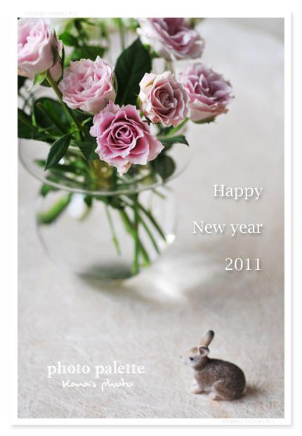 new year 2011.jpg